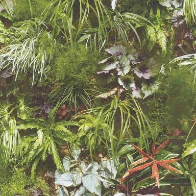 A.S. Creation Einzelblatt | 924513 | Papiertapete Naturoptik | 0.53 m x 10.05 m | Gelb