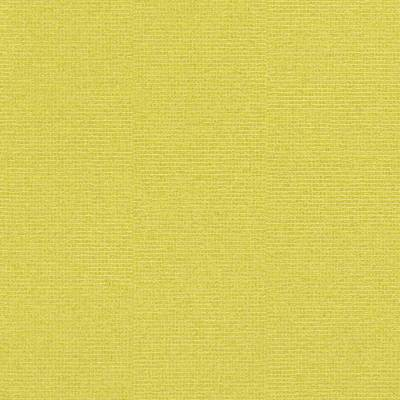 Rasch Cato   800647   Vliestapete Einfarbig   0.53 m x 10.05 m   Gelb