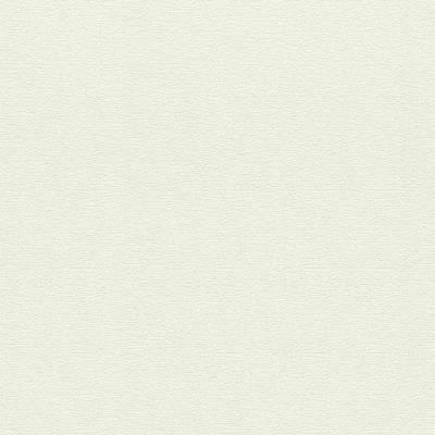 Rasch Cato | 800449 | Vliestapete Einfarbig | 0.53 m x 10.05 m | Beige