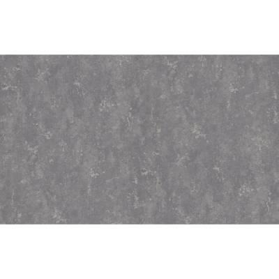 Erismann BasiXs | 632410 | Vinyltapete Tapete Betonoptik | 0.53 m x 10.05 m | Grau