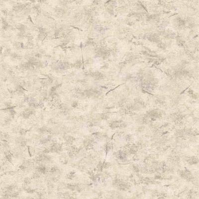 Rasch Andy Wand | 649703 | Vliestapeten Einfarbig | 53cm x 1005cm | Grau