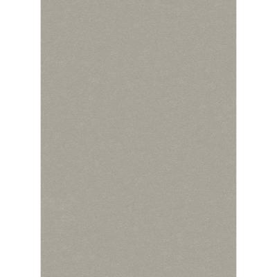 Erismann Brix unlimited | 593802 | Vliestapete uni | 0.53 m x 10.05 m | Beige