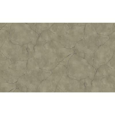 Erismann BasiXs | 632324 | Vliestapete Tapete Betonoptik | 0.53 m x 10.05 m | Braun