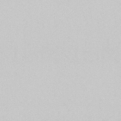 Rasch Modern Art   612349   Vliestapete Einfarbig   0.53 m x 10.05 m   Grau