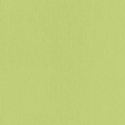 Erismann Paradisio   6307-07   Vliestapete Einfarbig   0.53 m x 10.05 m   Grün