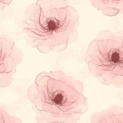 A.S. Creation X-Ray | 342743 | Vliestapete Blumen | 0.53 m x 10.05 m | Creme