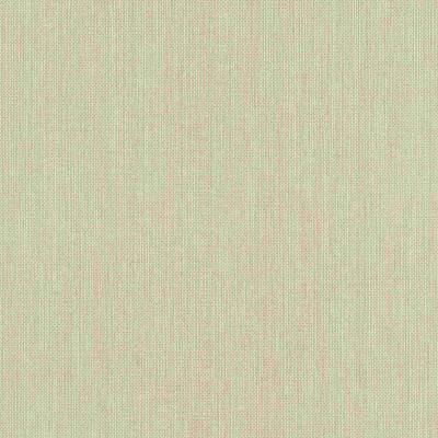 Erismann Paradisio | 6309-02 | Vliestapete Einfarbig | 0.53 m x 10.05 m | Beige